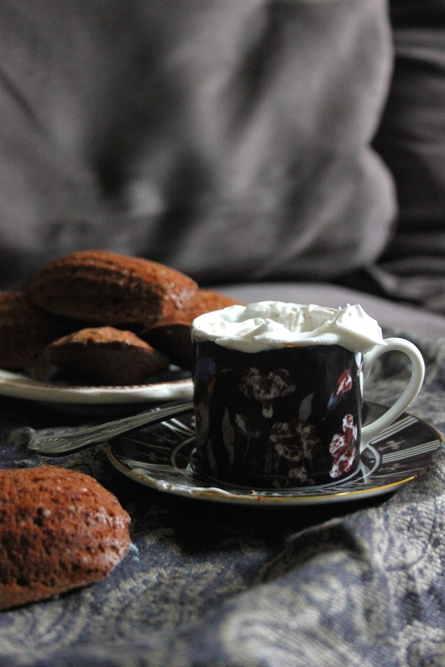 chocolate madeleines 17