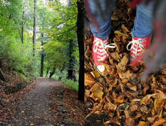 autumn walk in stirling