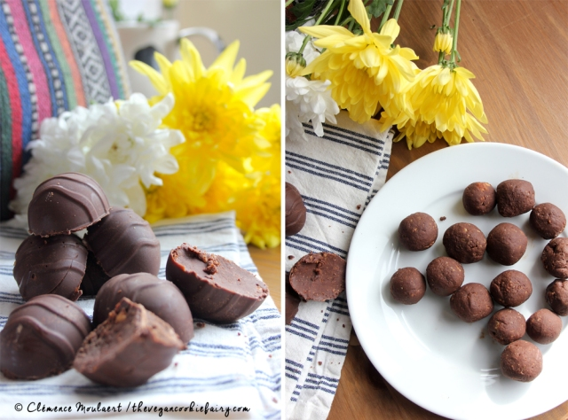 Vegan Chocolate Praline Easter Eggs